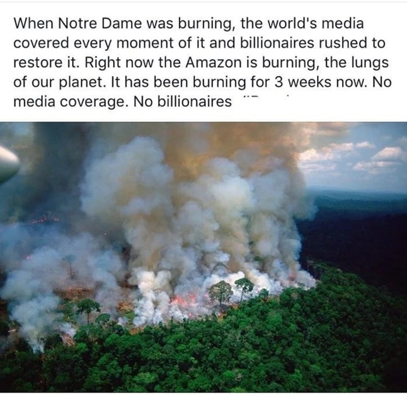 """Tweet that reads, """"When Notre Dame was burning, the world's media covered every moment of it and billionaires rushed to restore it. Right now the Amazon is burning, the lungs of our planet. It has been burning for 3 weeks now. No media coverage. No billionaires"""""""