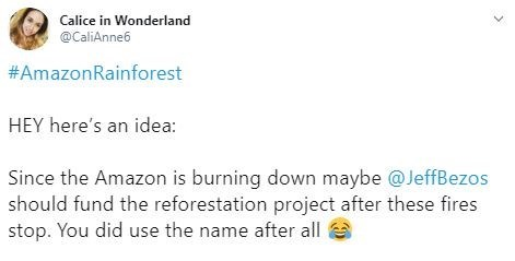 """Tweet that reads, """"HEY here's an idea: Since the Amazon is burning down maybe @JeffBezos should fund the reforestation project after these fires stop. You did use the name after all"""""""