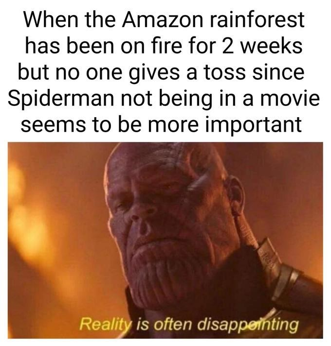 spider man - Text - When the Amazon rainforest has been on fire for 2 weeks but no one gives a toss since Spiderman not being in a movie seems to be more important Reality is often disappenting