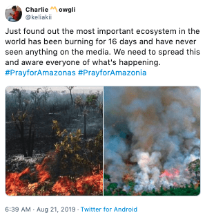 Text - Charlieowgli @keliakii Just found out the most important ecosystem in the world has been burning for 16 days and have never seen anything on the media. We need to spread this and aware everyone of what's happening. #PrayforAmazonas #PrayforAmazonia 6:39 AM Aug 21, 2019 Twitter for Android