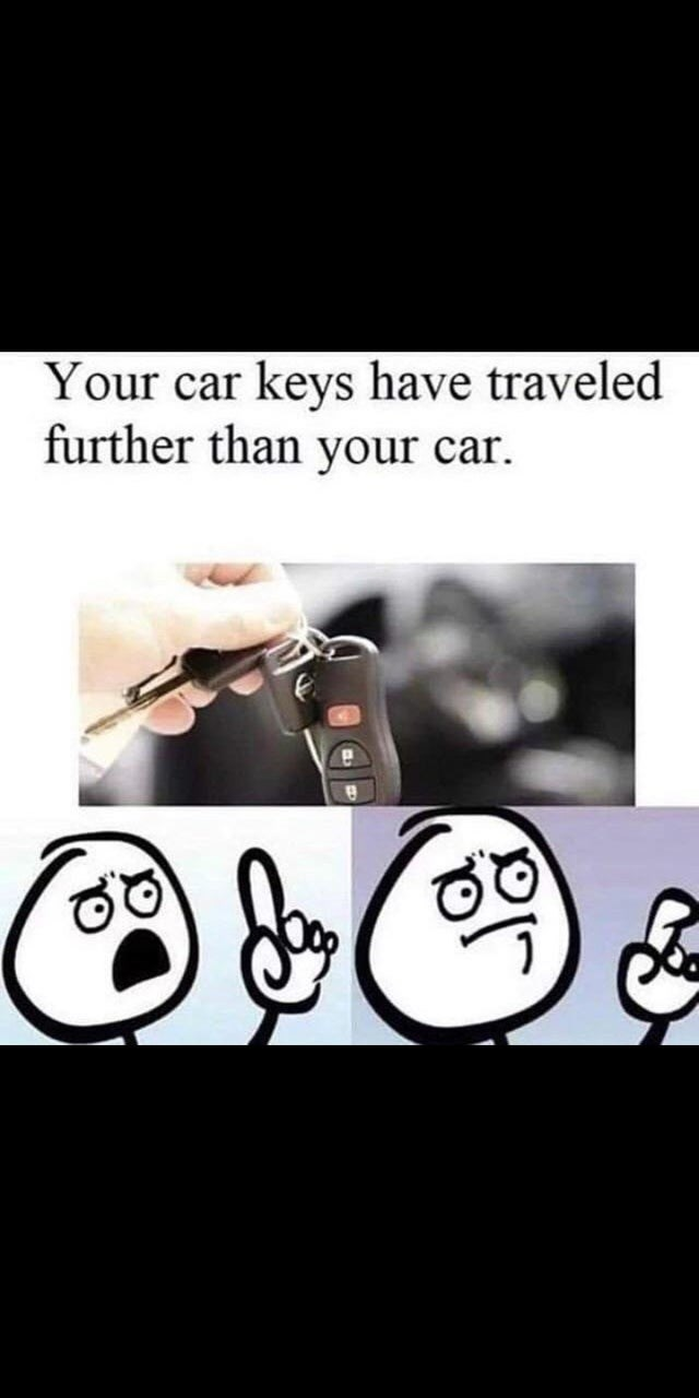 stupid but true - Text - Your car keys have traveled further than your car