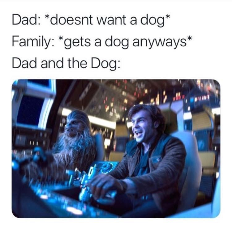 Product - Dad: *doesnt want a dog* Family: *gets a dog anyways* Dad and the Dog: