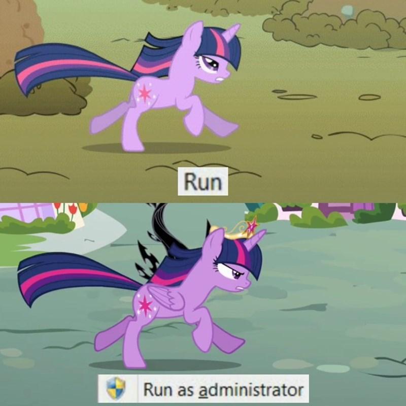 princess twilight sparkle twilight sparkle screencap puns a dog and pony show - 9348620800