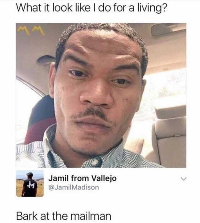 Face - What it look likeI do for a living? Jamil from Vallejo @JamilMadison Bark at the mailman