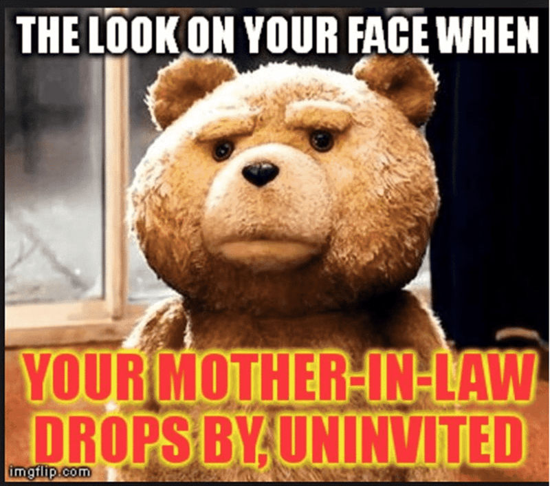 Bear - THE LOOKON YOUR FACE WHEN YOUR MOTHER-IN-LAW DROPS BYUNINVITED imgflip.com