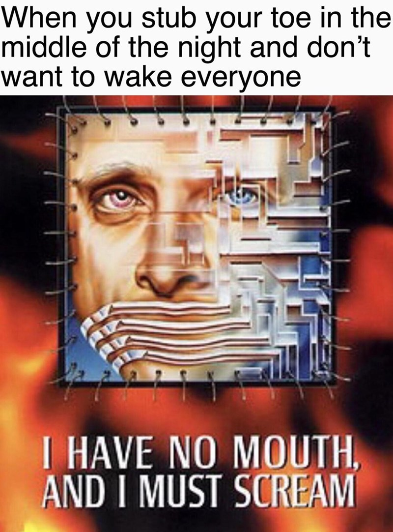 Text - When you stub your toe in the middle of the night and don't want to wake everyone I HAVE NO MOUTH AND I MUST SCREAM