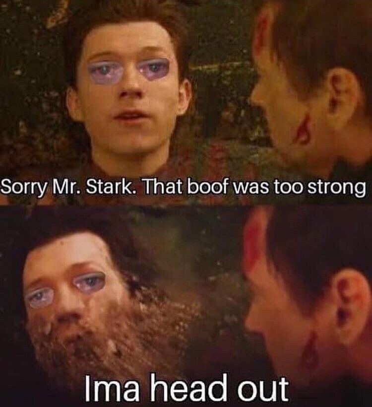 Face - Sorry Mr. Stark. That boof was too strong Ima head out