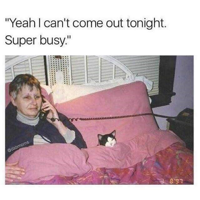 "Text - ""Yeah I can't come out tonight. Super busy."" dabmoms L5.8"