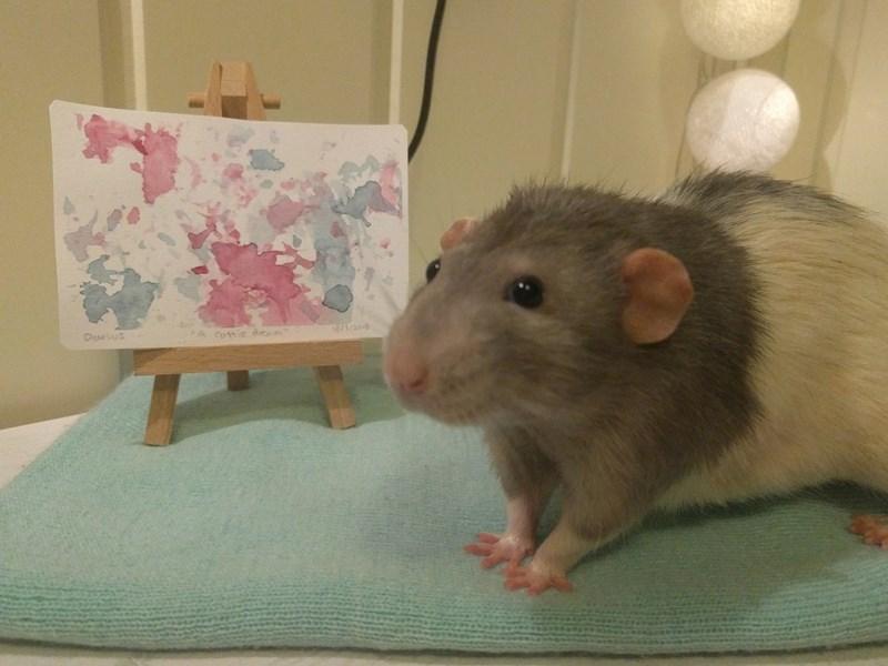 rat darius art painting