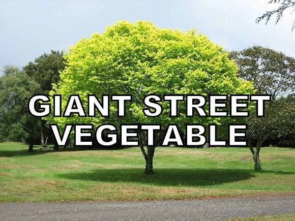Tree - GIANT STREET VEGETABLE