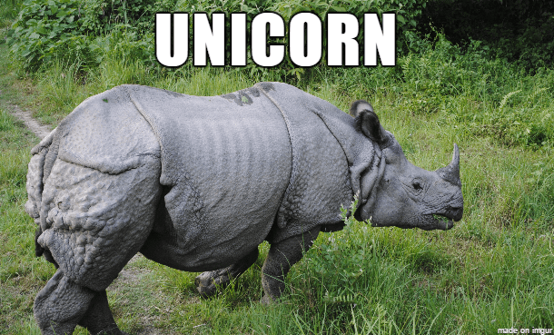 Rhinoceros - UNICORN made on imgur