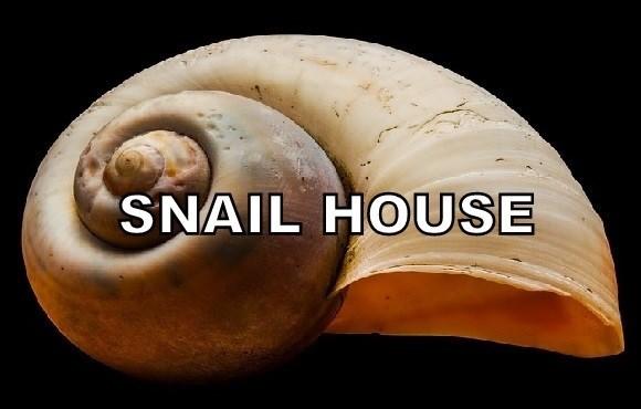 Snails and slugs - SNAIL HOUSE
