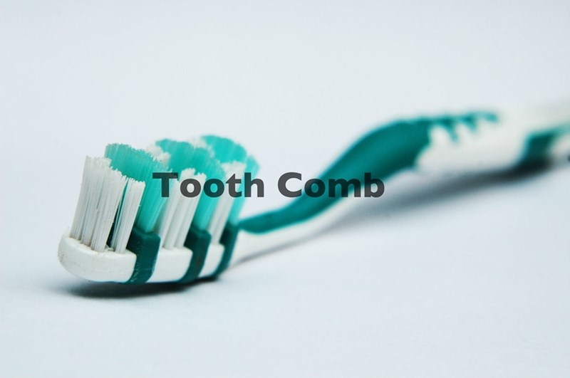 Toothbrush - Tooth Comb