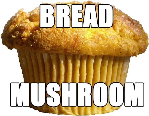 Food - BREAD MUSHROOM