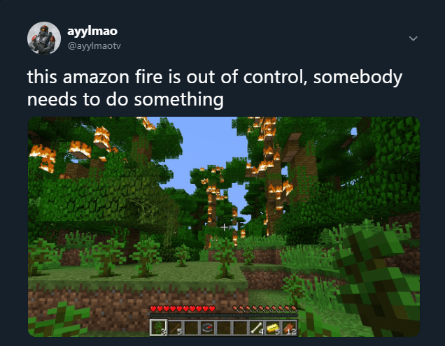 Action-adventure game - ayylmao @ayylmaotv this amazon fire is out of control, somebody needs to do something