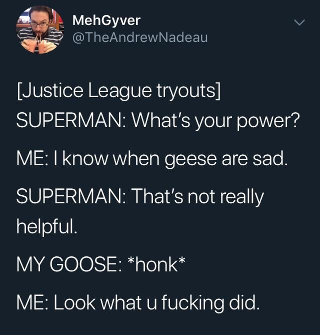 "Text - MehGyver @TheAndrewNadeau Justice League tryouts] SUPERMAN: What's your power? ME: I know when geese are sad. SUPERMAN: That's not really helpful. MY GOOSE: ""honk ME: Look what u fucking did."