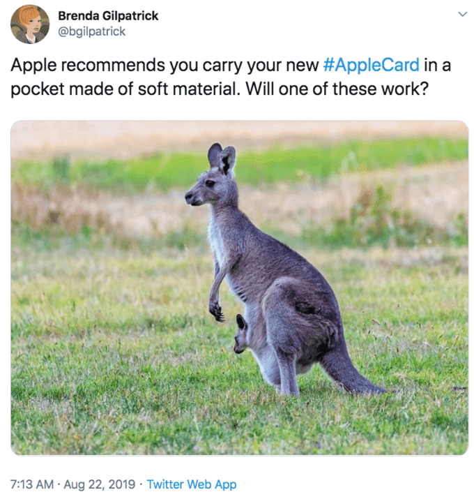 """Tweet that reads, """"Apple recommends you carry your new #AppleCard in a pocket made of soft material. Will one of these work?"""""""