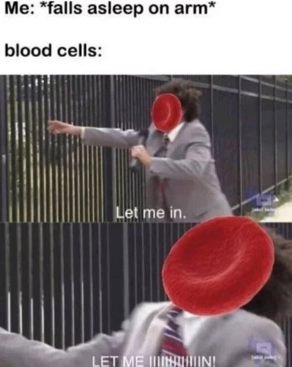 Arm - Me: *falls asleep on arm* blood cells: Let me in. LET ME IININ