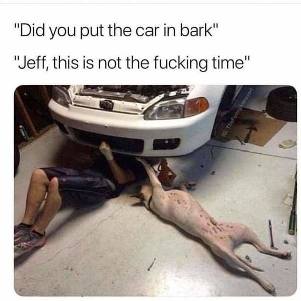 """Vehicle door - """"Did you put the car in bark"""" """"Jeff, this is not the fucking time"""" TheFun"""