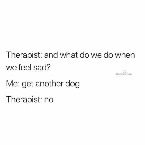 Text - Therapist: and what do we do when we feel sad? htegirsos Me: get another dog Therapist: no