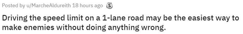 Text - Posted by u/MarcheAldureith 18 hours ago S Driving the speed limit on a 1-lane road may be the easiest way to make enemies without doing anything wrong.