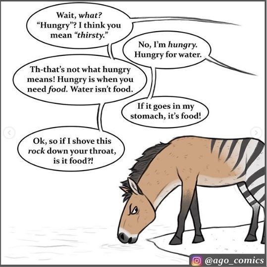 """Cartoon - Wait, what? """"Hungry""""? I think you mean """"thirsty."""" No, I'm hungry. Hungry for water. Th-that's not what hungry means! Hungry is when you need food. Water isn't food. If it goes in my stomach, it's food! Ok, so if I shove this rock down your throat is it food?! @ago_comics"""