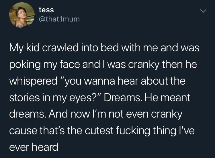 """Text - tess @that1mum My kid crawled into bed with me and was poking my face and I was cranky then he whispered """"you wanna hear about the stories in my eyes?"""" Dreams. He meant dreams. And now I'm not even cranky cause that's the cutest fucking thing I've ever heard"""
