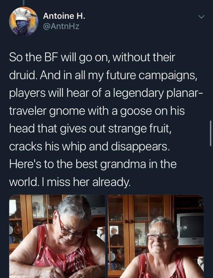 twitter - Text - Antoine H. @AntnHz So the BF will go on, without their druid. And in all my future campaigns, players will hear of a legendary planar- traveler gnome with a goose on his head that gives out strange fruit, cracks his whip and disappears. Here's to the best grandma in the world. I miss her already.