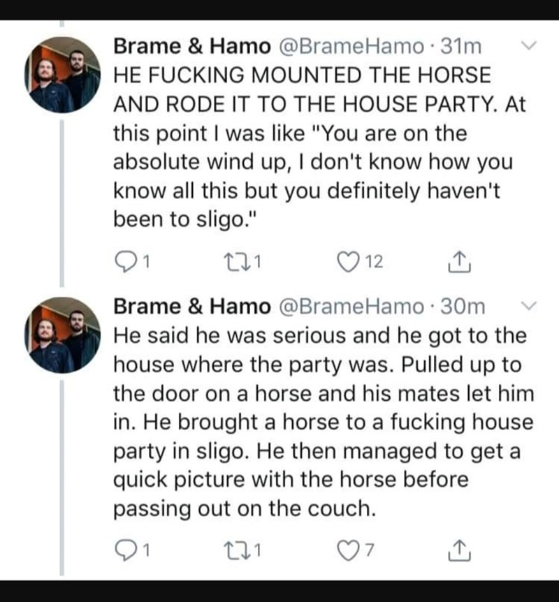 "Text - Brame & Hamo @BrameHamo 31m HE FUCKING MOUNTED THE HORSE AND RODE IT TO THE HOUSE PARTY. At this point I was like ""You are on the absolute wind up, I don't know how you know all this but you definitely haven't been to sligo."" 12 Brame & Hamo @BrameHamo 30m He said he was serious and he got to the house where the party was. Pulled up to the door on a horse and his mates let him in. He brought a horse to a fucking house party in sligo. He then managed to get a quick picture with the horse b"