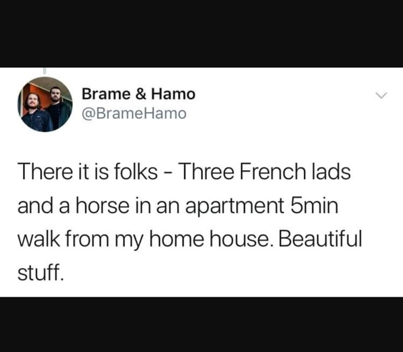 Text - Brame & Hamo @BrameHamo There it is folks - Three French lads and a horse in an apartment 5min walk from my home house. Beautiful stuff.