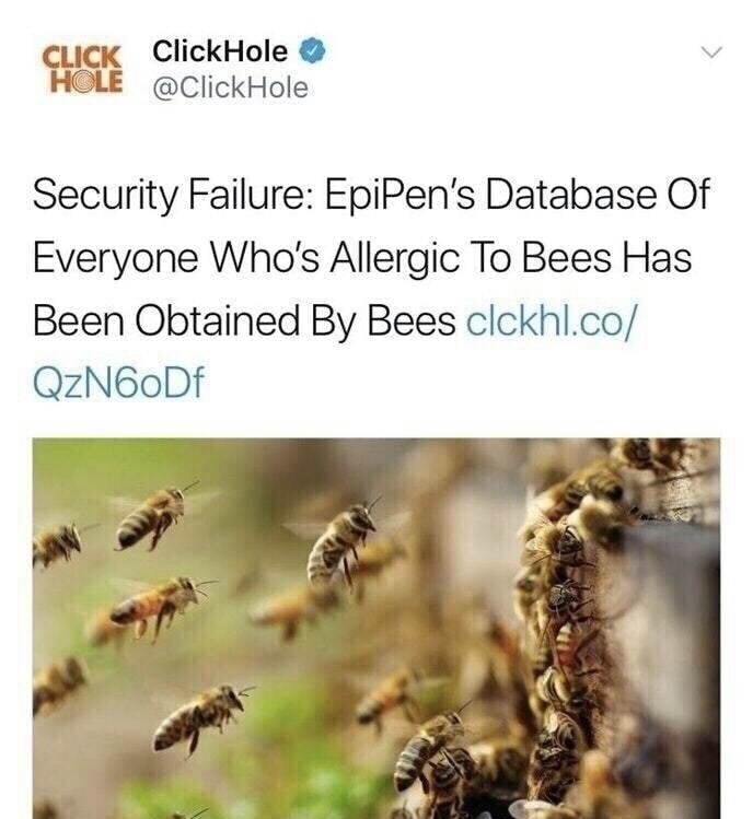 Insect - CLICK ClickHole HOLE @ClickHole Security Failure: EpiPen's Database Of Everyone Who's Allergic To Bees Has Been Obtained By Bees clckhl.co/ QzN60Df