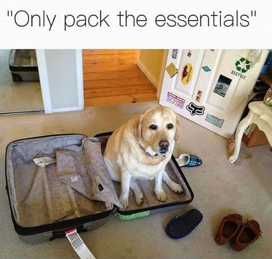 """Canidae - """"Only pack the essentials"""" RECYCLE 4 uF"""