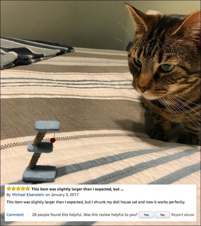 Cat - This item was slightly larger than I expected, but. By Michael Eisenstein on January 3, 2017 This item was slightly larger than I expected, but I shrunk my doll house cat and now it works perfectly. 28 people found this helpful. Was this review helpful to you? Comment Report abuse Yes No