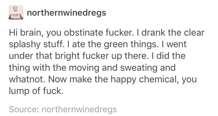 meme - Text - northernwinedregs Hi brain, you obstinate fucker. Il drank the clear splashy stuff. I ate the green things. I went under that bright fucker up there. I did the thing with the moving and sweating and whatnot. Now make the happy chemical, you lump of fuck. Source: northernwinedregs