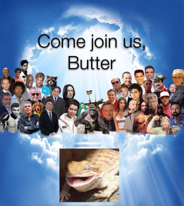 People - Come join us, Butter Wi