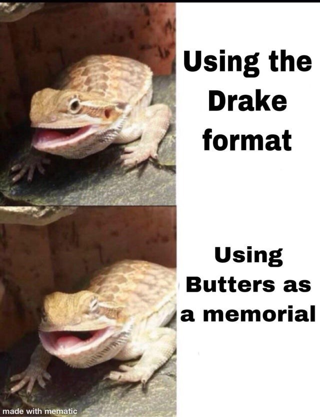 Reptile - Using the Drake format Using Butters as a memorial made with mematic