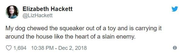 Text - Elizabeth Hackett @LizHackett My dog chewed the squeaker out of a toy and is carrying it around the house like the heart of a slain enemy 1,694 10:38 PM - Dec 2, 2018