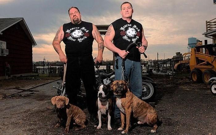 Dog - ESCM Herd