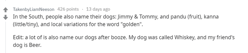 "Text - TakenbyLiamNeeson 426 points 13 days ago In the South, people also name their dogs: Jimmy & Tommy, and pandu (fruit), kanna (little/tiny), and local variations for the word ""golden"" Edit: a lot of is also name our dogs after booze. My dog was called Whiskey, and my friend's dog is Beer"