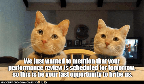 Cat - We just wanted to mention that your performance review is scheduled for tomortow sothis is be your lastopportunity to bribe us. CANHASCHEE2EURGER cOM