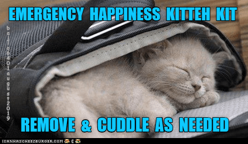 Cat - EMERGENCY HAPPINESS KITTEH KIT REMOVE & CUDDLE AS NEEDED CANHASCHEE2EURGER cOM 9U Sf201