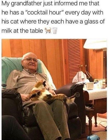 "Comfort - My grandfather just informed me that he has a ""cocktail hour"" every day with his cat where they each have a glass of milk at the table"
