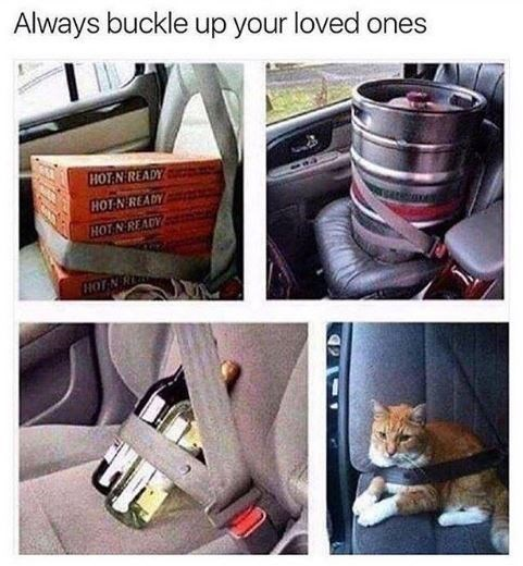Car - Always buckle up your loved ones HOT N READY HOT-N READY HOT N READY HOT N