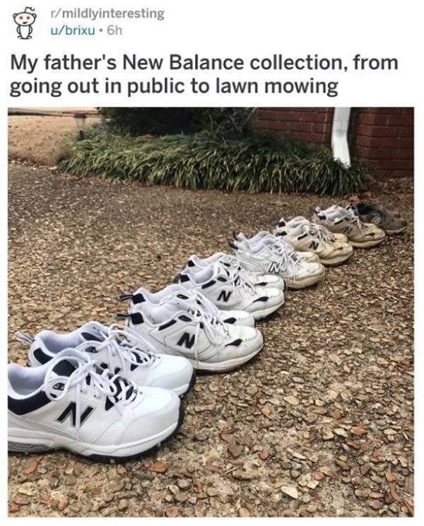 Footwear - r/mildlyinteresting u/brixu 6h My father's New Balance collection, from going out in public to lawn mowing