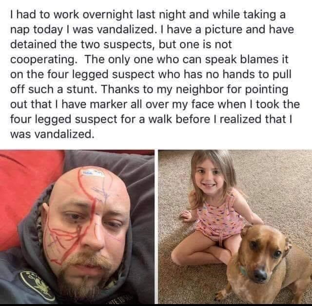 Facial expression - I had to work overnight last night and while taking a nap today I was vandalized. I have a picture and have detained the two suspects, but one is not cooperating. The only one who can speak blames it on the four legged suspect who has no hands to pull off such a stunt. Thanks to my neighbor for pointing out that I have marker all over my face when I took the four legged suspect for a walk before I realized that I was vandalized
