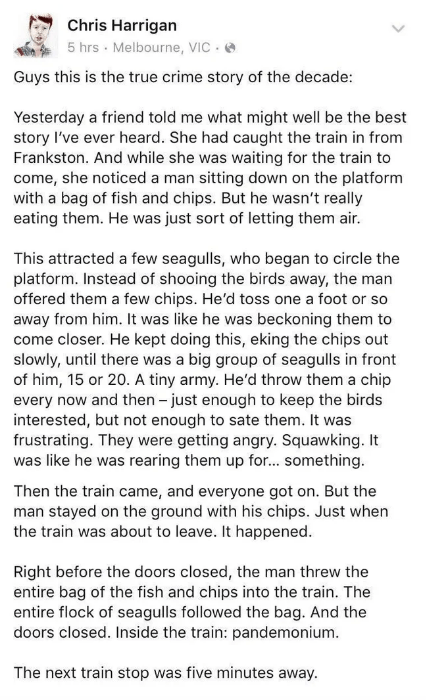 reddit - Text - Chris Harrigan 5 hrs Melbourne, VIC Guys this is the true crime story of the decade: Yesterday a friend told me what might well be the best story I've ever heard. She had caught the train in from Frankston. And while she was waiting for the train to come, she noticed a man sitting down on the platform with a bag of fish and chips. But he wasn't really eating them. He was just sort of letting them air. This attracted a few seagulls, who began to circle the platform. Instead of sho