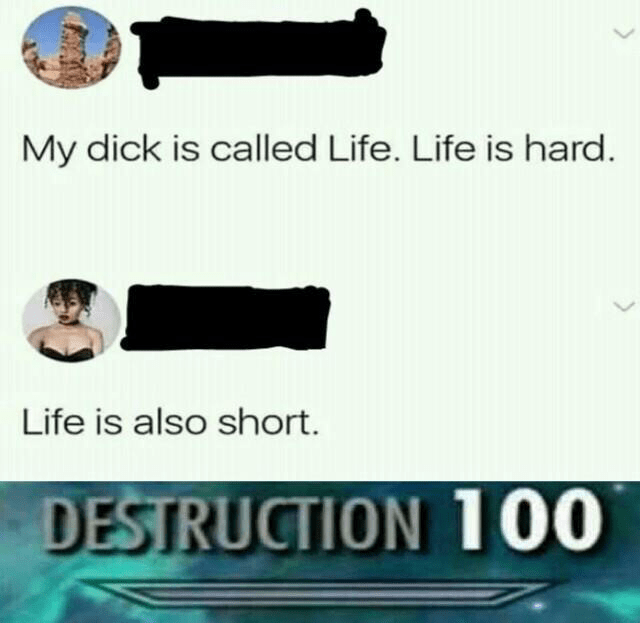 """Meme that reads, """"My dick is called Life. Life is hard; Life is also short; DESTRUCTION 100"""""""