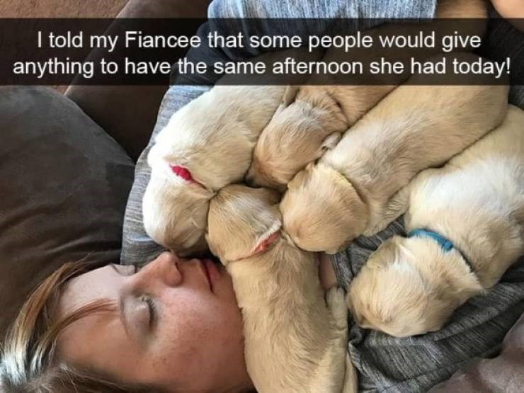 dog snapchat - Puppy - I told my Fiancee that some people would give anything to have the same afternoon she had today!