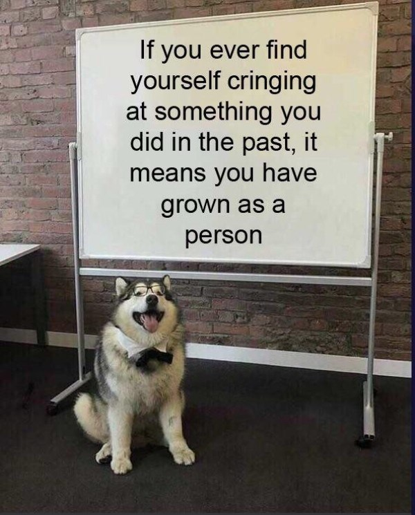 Dog - If you ever find yourself cringing at something you did in the past, it means you have grown as a person
