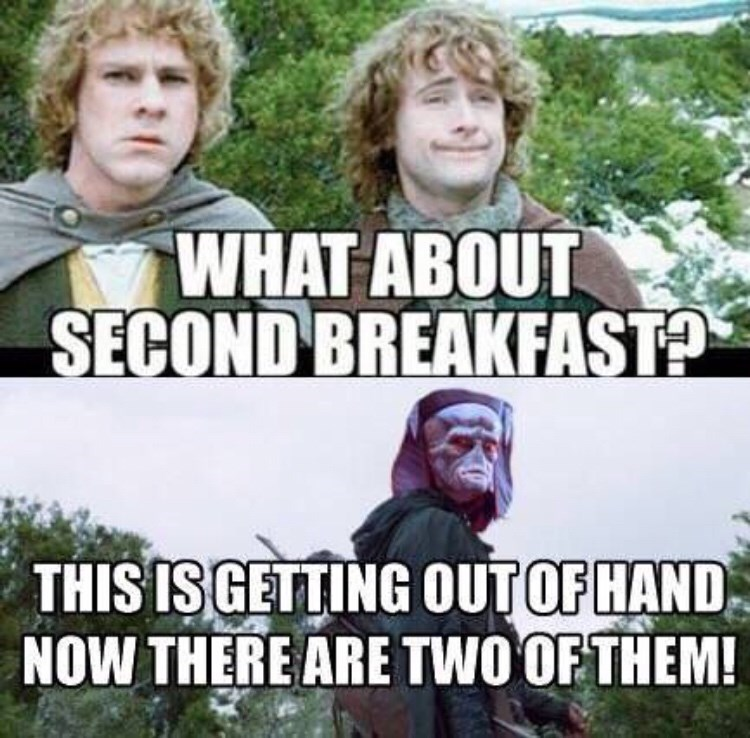 Internet meme - WHAT ABOUT SECOND BREAKFASTA THIS ISGETTING OUTOF HAND NOW THERE ARE TWO OF THEM!